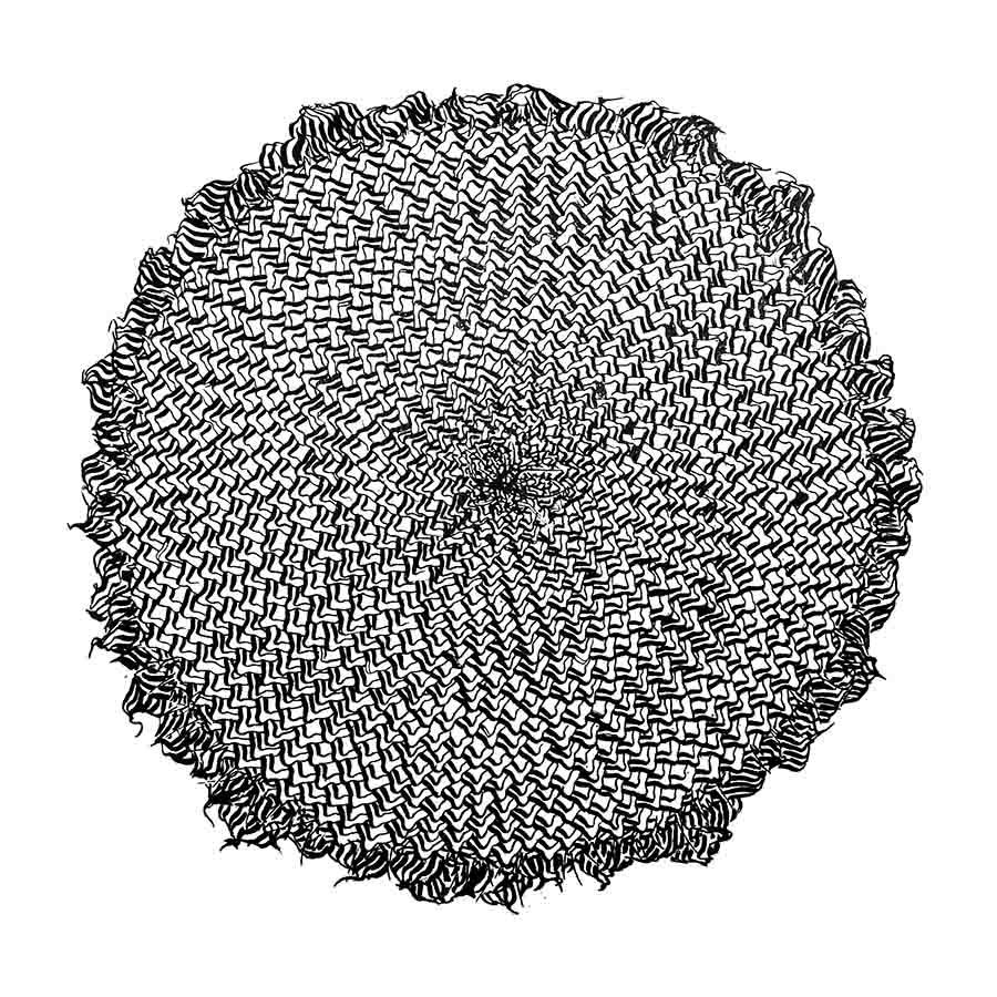 girasol web 17